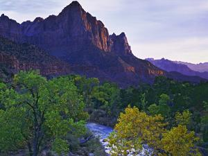 The Watchman Peak and the Virgin River, Zion National Park, Utah, USA by Dennis Flaherty