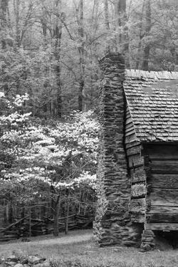 USA, Tennessee, Great Smoky Mountains National Park. Abandoned Cabin by Dennis Flaherty