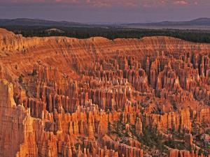View of the Hoodoos or Eroded Rock Formations in Bryce Amphitheater, Bryce Canyon National Park by Dennis Flaherty