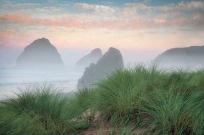 Cape Sebastian by Dennis Frates