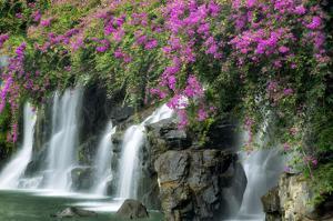 Floral Falls by Dennis Frates