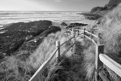 Pathway to Beach by Dennis Frates