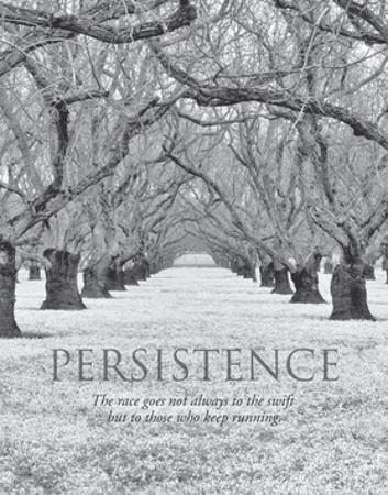 Persistence by Dennis Frates