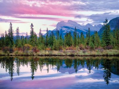 Purple Sky Treeline by Dennis Frates