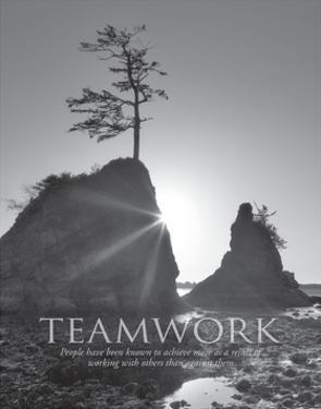 Teamwork by Dennis Frates