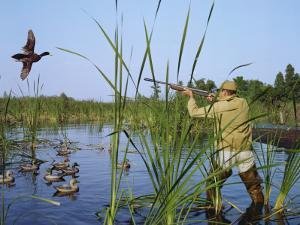 Hunter Aiming Rifle at Flying Duck by Dennis Hallinan