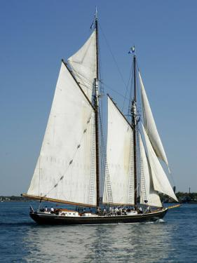 Tall Ship on the St. Clair River, MI by Dennis Macdonald