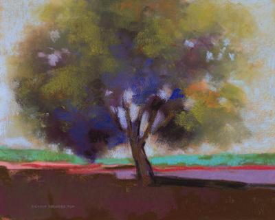 Twilight Oak IV