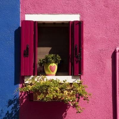 Colorful Walls and Window