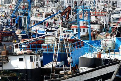 https://imgc.allpostersimages.com/img/posters/densely-crowded-fishing-boats-moored-in-tangier-fishing-harbour-tangier-morocco_u-L-PWFRLO0.jpg?p=0