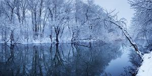 Winter Landscape with River in Forest by Denys Bilytskyi
