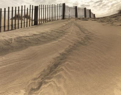 Beach Fence by Derek Jecxz