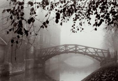 Cambridge Mist