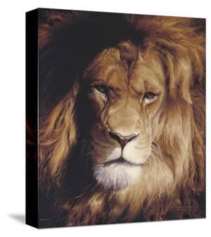 Botswana King by Derek Wicks