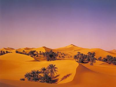 https://imgc.allpostersimages.com/img/posters/desert-dunes-palms_u-L-Q11YKWP0.jpg?p=0