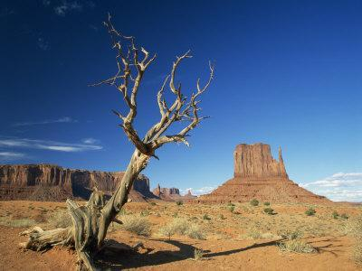https://imgc.allpostersimages.com/img/posters/desert-landscape-with-rock-formations-and-cliffs-in-the-background-monument-valley-arizona-usa_u-L-P7XKGC0.jpg?p=0