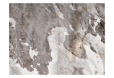 https://imgc.allpostersimages.com/img/posters/desert-tapestry-1_u-L-F9A6TI0.jpg?artPerspective=n