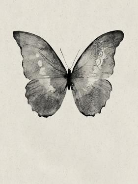 Black Butterfly on Tan by Design Fabrikken