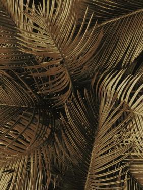 Golden Palm 2 by Design Fabrikken