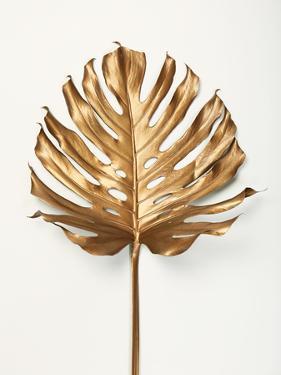 Monstrea Gold Leaf by Design Fabrikken