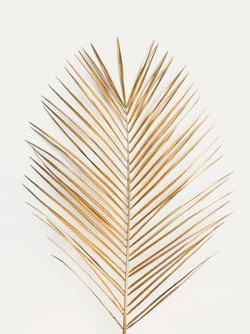 Palm Leaf Gold by Design Fabrikken