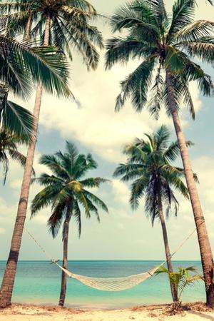 Palm Sky 3 by Design Fabrikken