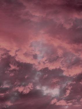 Pink Sky by Design Fabrikken