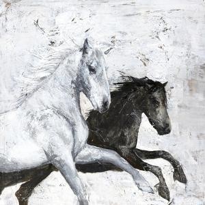 Wild Horse 2 by Design Fabrikken