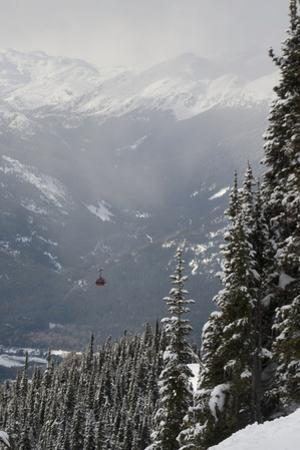 A Red Cable Car Riding over the Snow Covered Forest; Whistler British Columbia Canada by Design Pics Inc