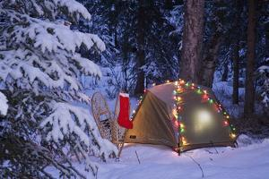 A Tent Is Set Up in the Woods with Christmas Lights and Stocking Near Anchorage, Alaska by Design Pics Inc