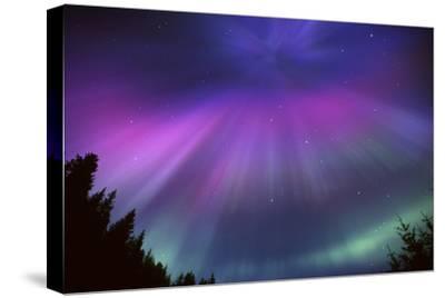 Aurora Corona over Crow Creek Sc Alaska Winter by Design Pics Inc