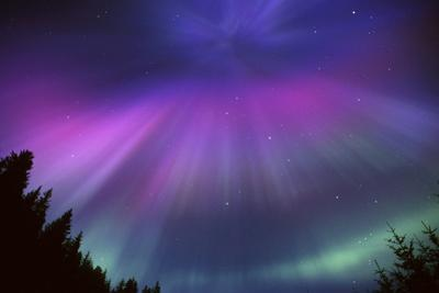 Aurora Corona over Crow Creek Sc Alaska Winter by Design Pics Inc