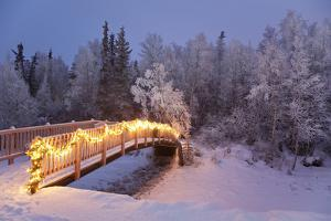 Bridge Decorated with Christmas Lights in a Forest Setting, Southcentral Alaska by Design Pics Inc