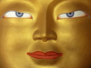 Buddha in Monastery, Close Up; Ladakh, India by Design Pics Inc