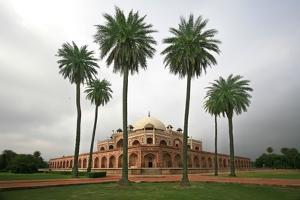 Building with Palm Trees in Foreground; New Delhi,India by Design Pics Inc