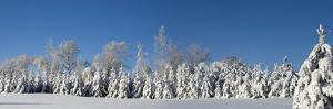Canadian Winter Panorama; Foster Quebec Canada by Design Pics Inc