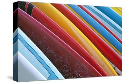 Close Up of Coloured Surfboards Lined Up; Honolulu, Oahu, Hawaii, United States of America by Design Pics Inc