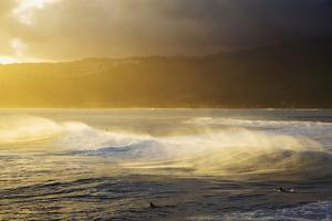 Crashing Wave and Ocean Spray Illuminated by Evening Light by Design Pics Inc