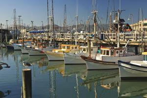Fishermen's Terminal; San Francisco California United States of America by Design Pics Inc