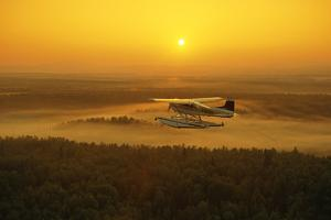 Floatplane Flying at Sunset Matanuska Valley Sc Ak Summer by Design Pics Inc