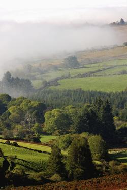 Fog Rolling into Nire Valley; Clonmel, County Tipperary, Ireland by Design Pics Inc