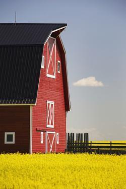 Front of a Red Barn by Design Pics Inc