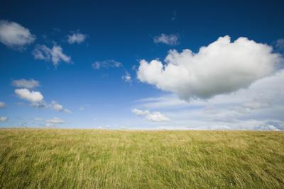 Grassy Field on Hill with Blue Skies and Clouds