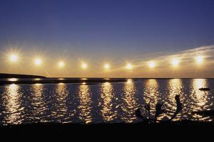Multiple Exposure of Arctic Midnight Sun Moving across Horizon over Arctic Coast Anwr W by Design Pics Inc