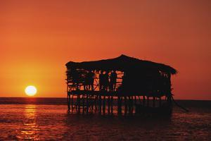 Pelican Bar at Sunset by Design Pics Inc