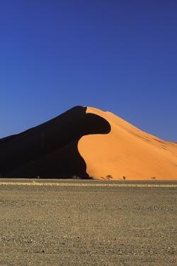 Sand Dune and Field by Design Pics Inc