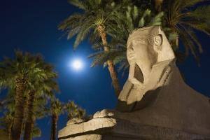 Sphinx and Date Palms with Full Moon Behind by Design Pics Inc