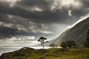 Sunlight Shingin Through the Storm Clouds over the Water Along the Coastline by Design Pics Inc