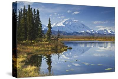 The North Face and Peak of Mt. Mckinley Is Reflected in a Small Tundra Pond in Denali National Park by Design Pics Inc