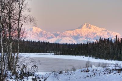 Winter Scenic of the Southside of Mt. Mckinley as Seen from South of the Denali National Park by Design Pics Inc